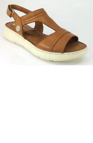 Sandales D`été Tabac 7710