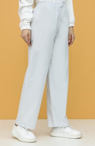 Pantalon Gris clair 8551-02