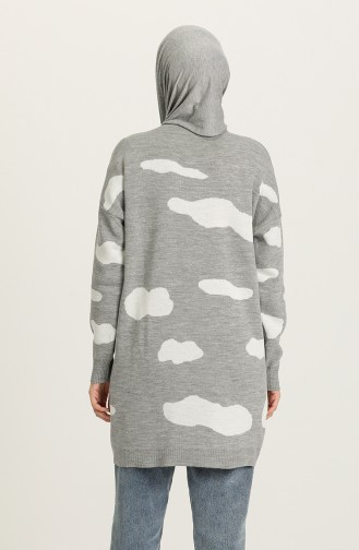 Pull Gris 4302-04