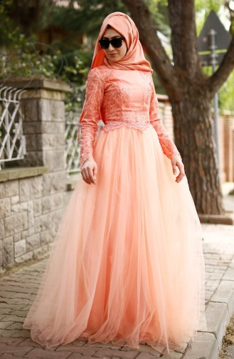 Pink Islamic Clothing Evening Dress 3011-01